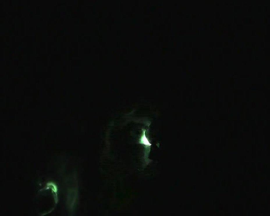 Facelight