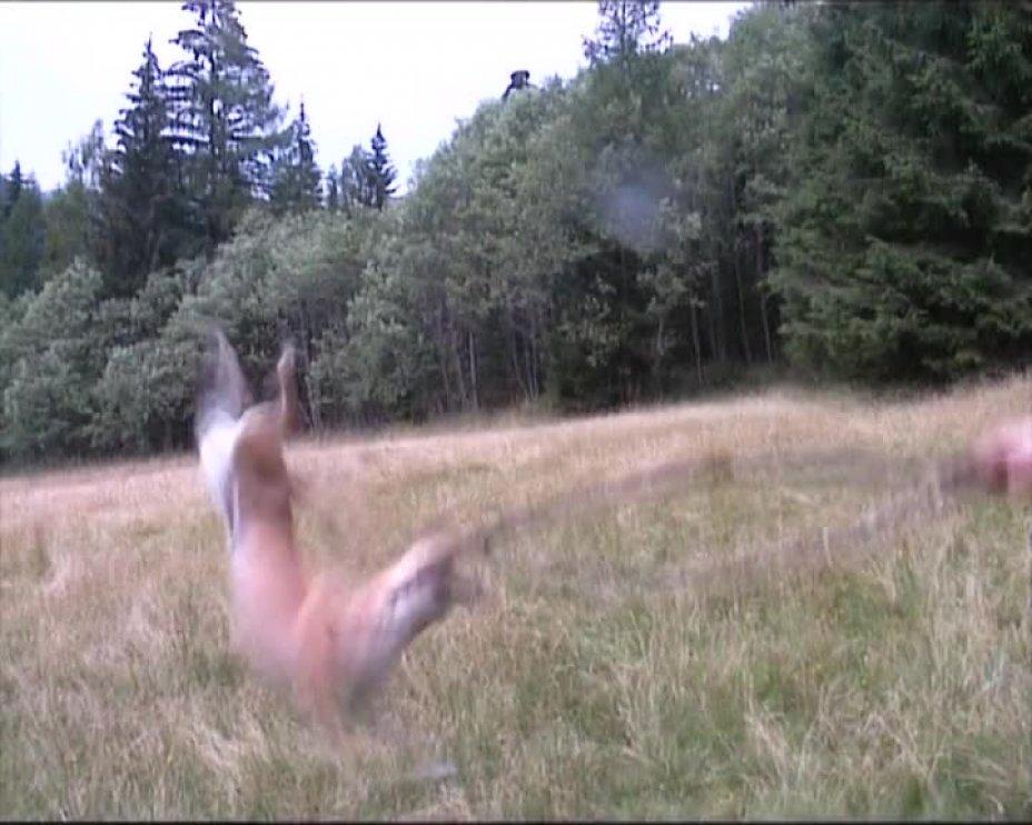 Fuxi springt (Part 2)